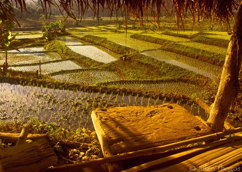 Reprise en solo – Direction poste de frontière Laos / Thaïlande